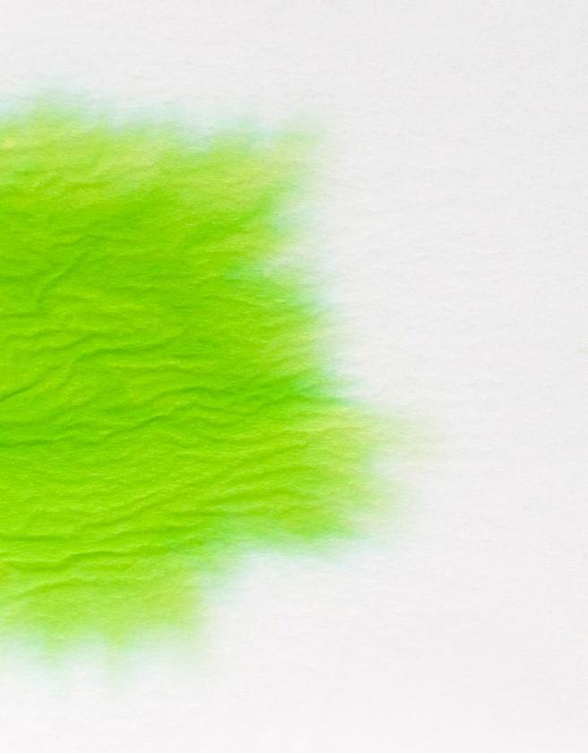 J.Herbin Vert Pre chromatografia2