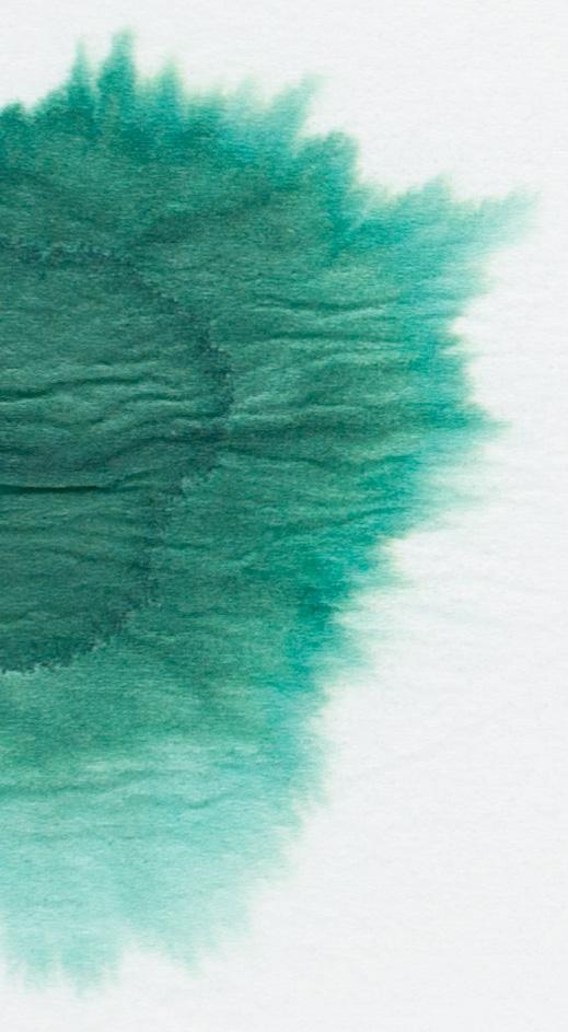De-Atramentis-Document-Ink-Green-chromatografia2