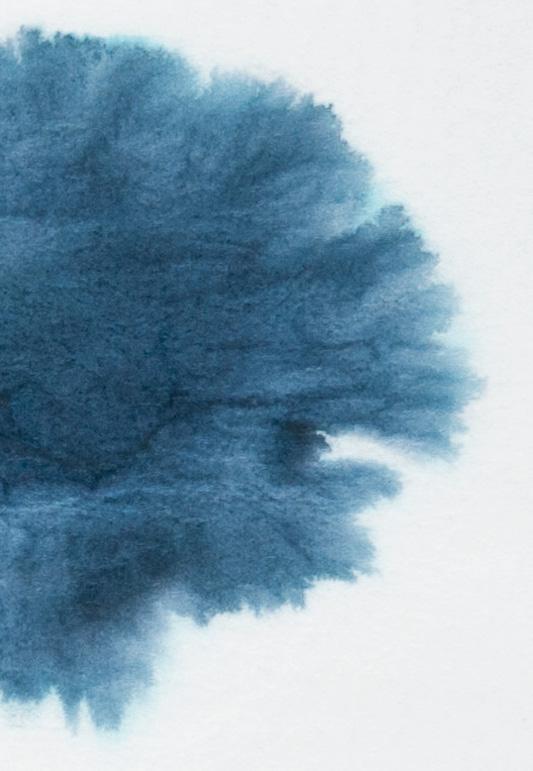 L'Artisan-Pastellier-Callifolio-Bonne-Esperance-chromatografia2