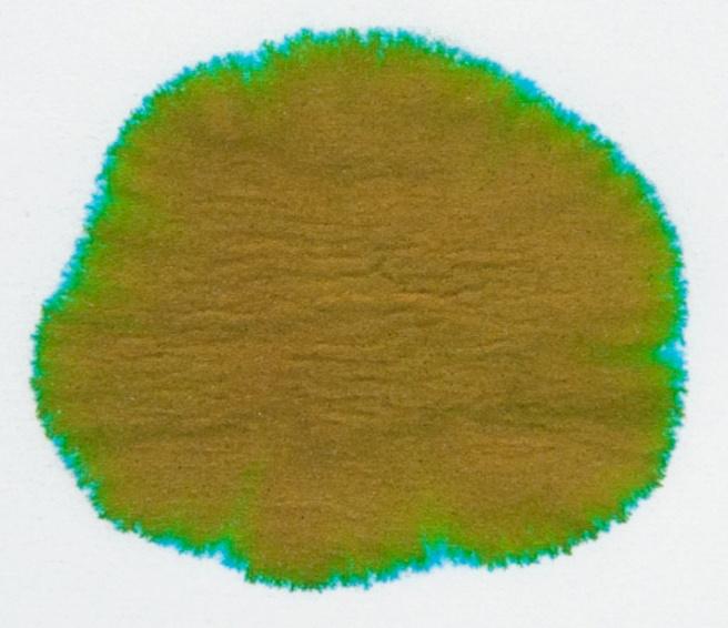 Rohrer-&-Klingner-Alt-Goldgrun-chromatografia1
